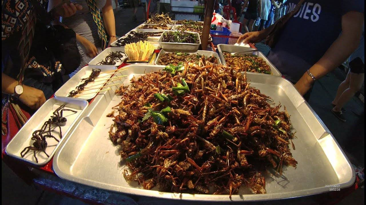 bizarre foods in thailand When i travel, i like to experience the local culture in asia, that mindset took me way out of my comfort zone check out these bizarre foods in thailand.